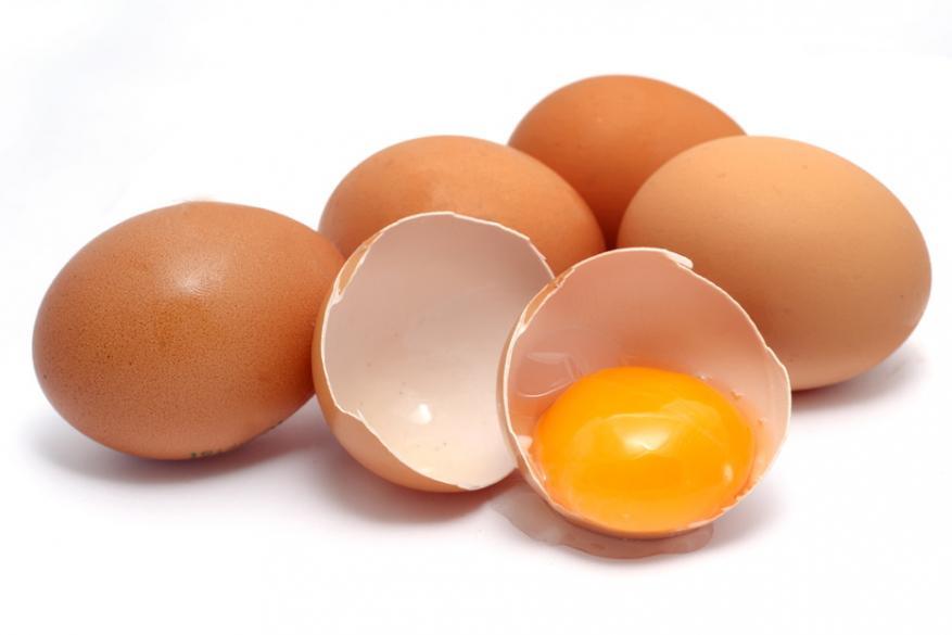 Μολυσμένα αυγά και...κατοικίδια
