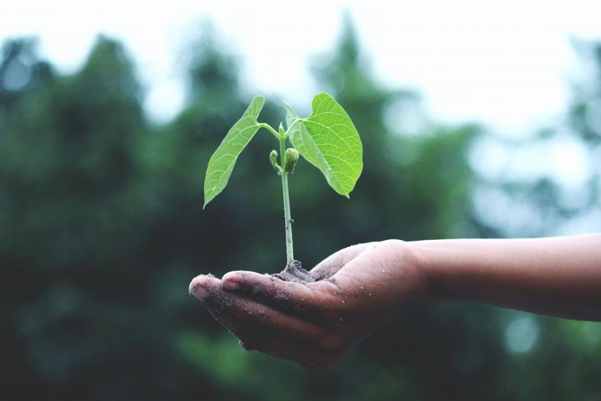 Προετοιμαστείτε για τις 'πράσινες' επενδύσεις!