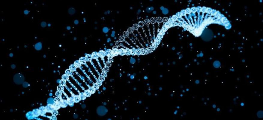 Πόσο ασφαλή είναι τα προσωπικά μας δεδομένα από τις εταιρείες έλεγχου DNA;